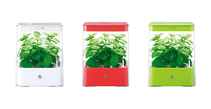 greenfarm_cube_01