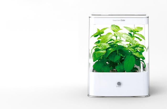 greenfarm_cube_03