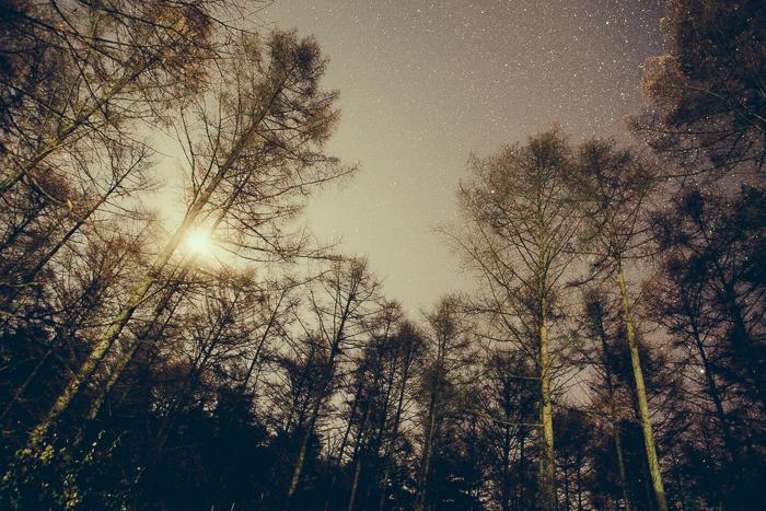 나의 별은 사라지고 어둠 만이 짙어가는데