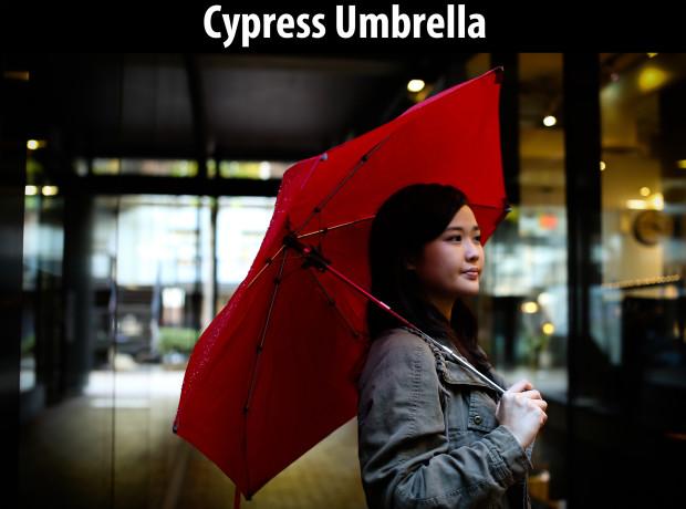 Cypress (1)