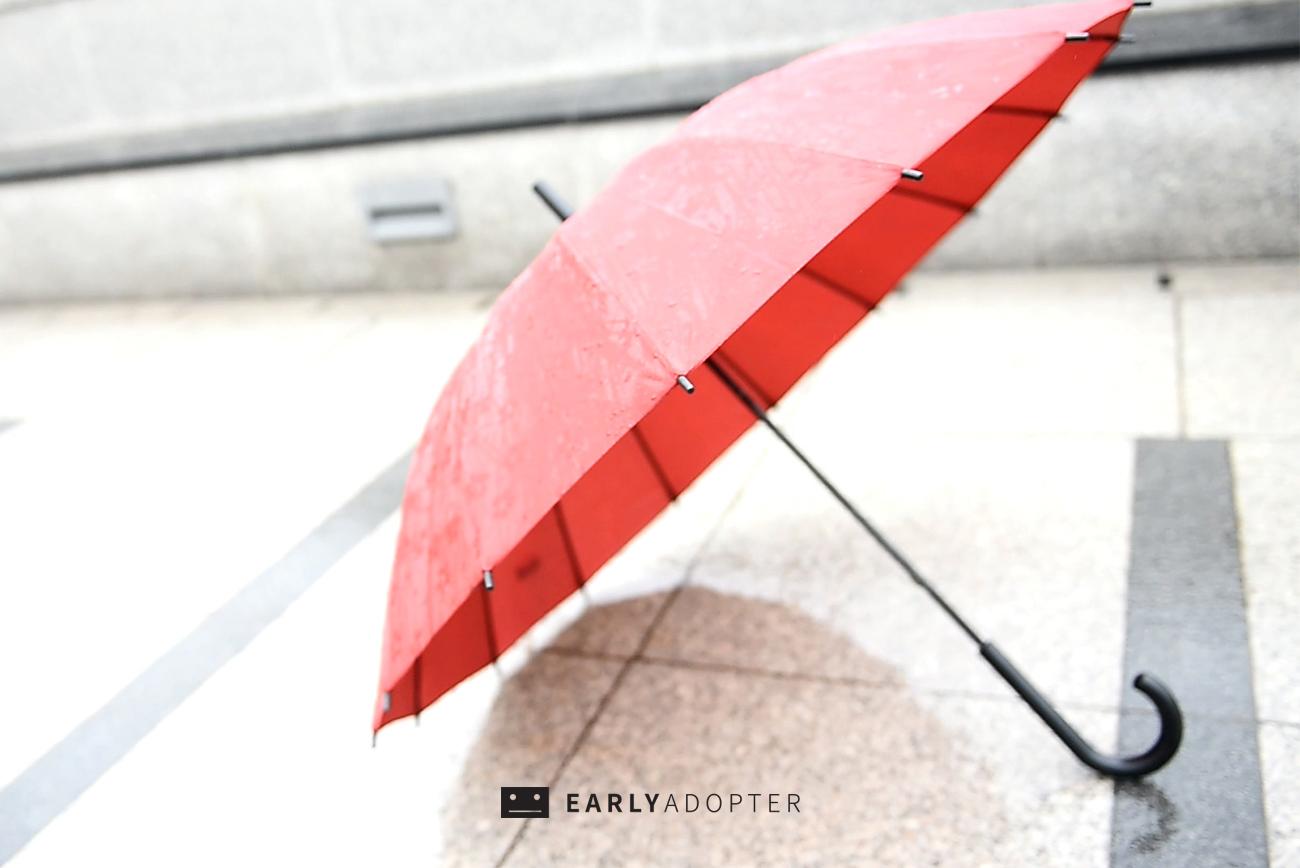 sakura umbrella 01 (1)