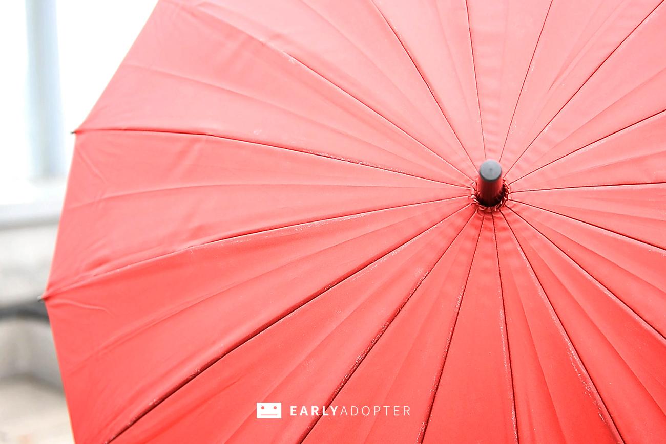 sakura umbrella 01 (4)