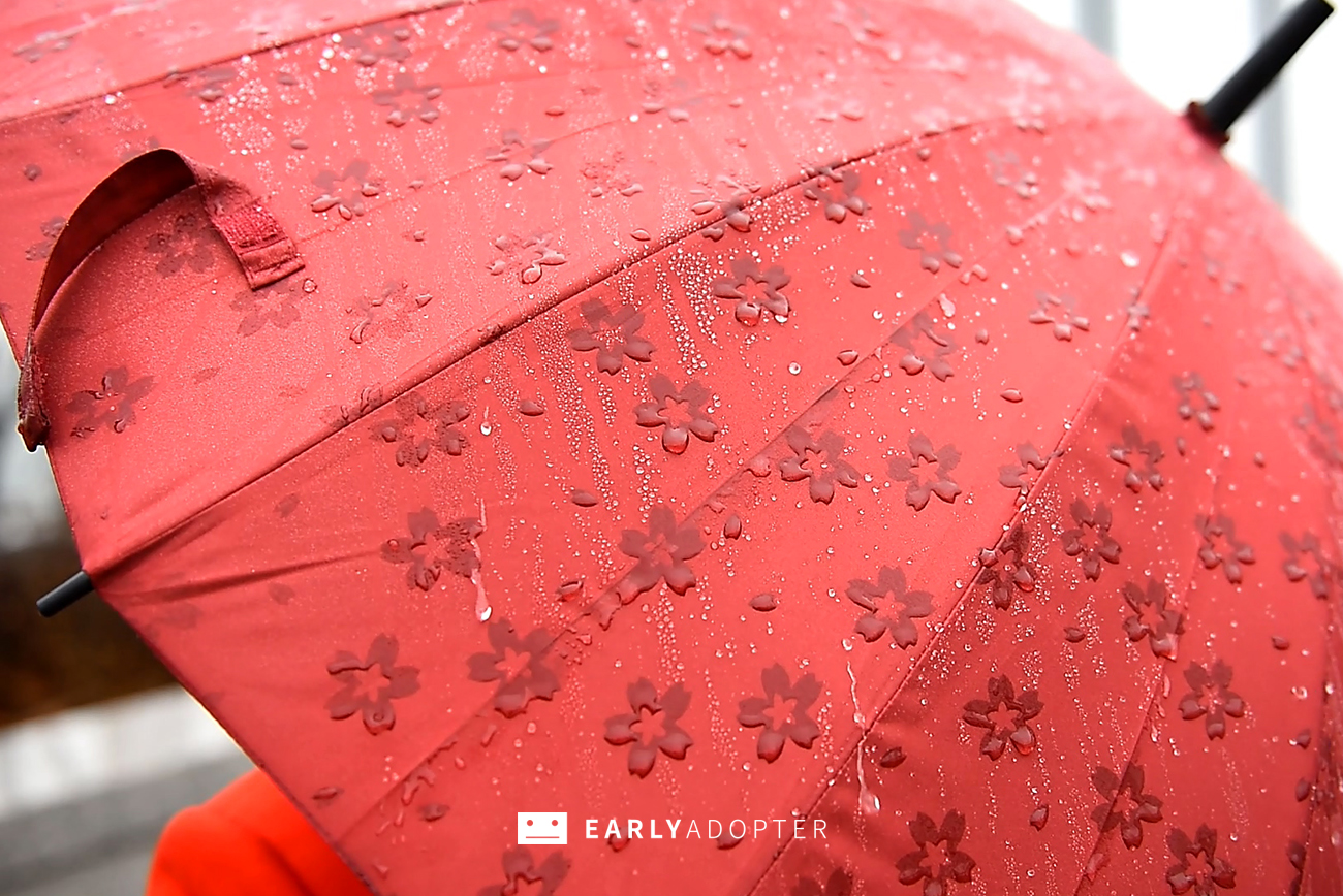 sakura umbrella 01 (5)