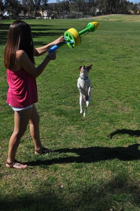 hurrik9 120feet ring launcher for dogs (2)