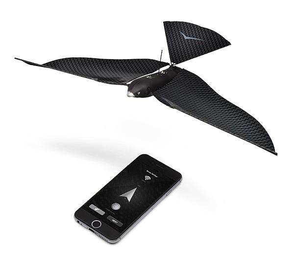 Bionic Bird (1)